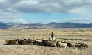 A modern day goat herder in front of the Altai mountains.