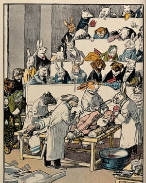 A coloured cartoon; a variety of animals sit in the a tiered dissection theatre, watching four rabbits and a mouse or rat in lab coats - they are apparently about to dissect a frightened looking naked man with a long white beard.