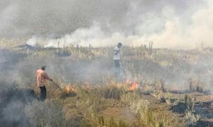 Crop burning in the Indian state of Punjab.