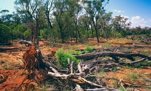 The federal government sought a review of environment laws amid concerns they are placing too great a burden on farmers
