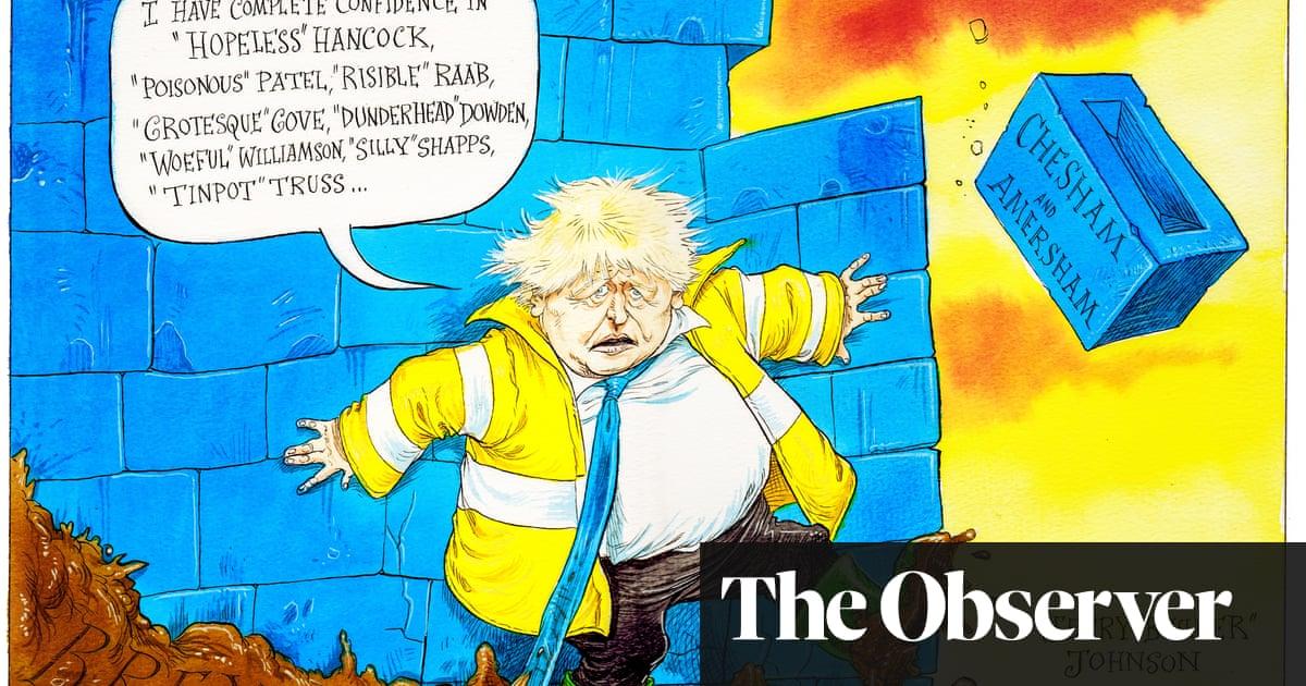 Boris Johnson's blue wall starts to crumble – cartoon