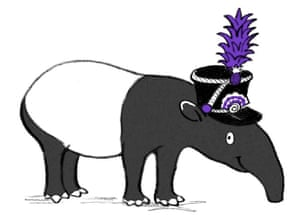 <strong>Polly says: </strong>And Bambang, a nervous tapir getting braver every day, with a fondness for hats, a snout made for swimming, and an ear for making music at midnight.