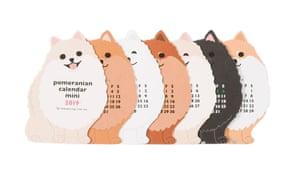 Pomeranian mini calendar, 2019