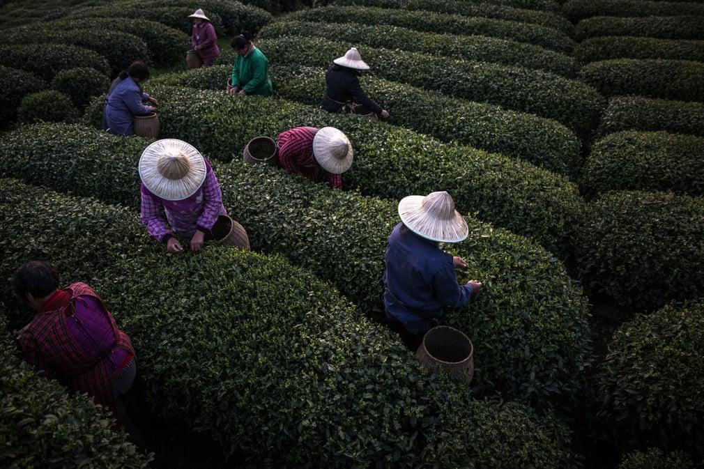 Zhejiang, China