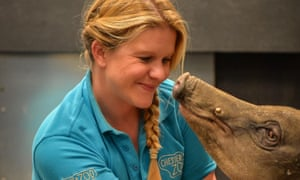 Hannah Sievewright with a babirusa at Chester zoo.