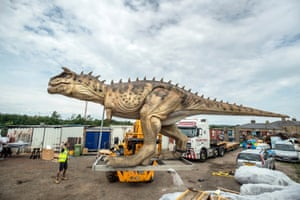 Normanton, England An 8-metre-long animatronic Carnotaurus dinosaur is unpacked from a shipping container in Yorkshire