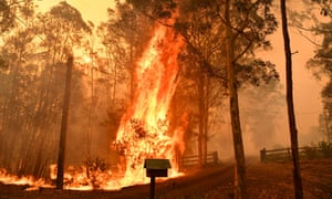 Fire going through a fence during a bushfire in Werombi, 50km south-west of Sydney