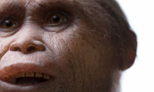 An artist's impression of the 'hobbits' that are thought to have roamed the island of Flores.