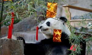 chinese new year myth