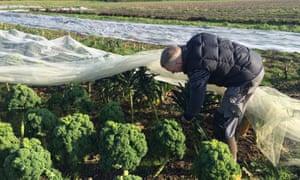 Koen Tierens on his farm in Kampenhout, Flanders.