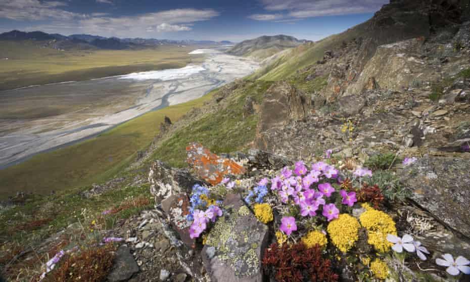 Arctic National Wildlife Refuge Brooks Range.
