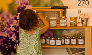 A young girl looks at pots of honey on a shelf in the gift shop at the National Beekeeping Centre Wales.