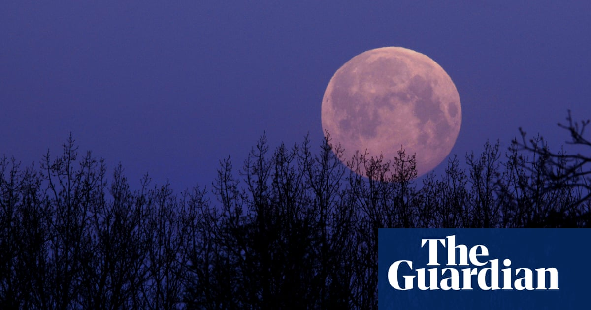 April pink full moon: readers' photos of the supermoon – The Guardian