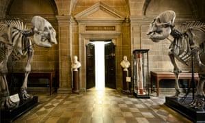 6 - Anatomy Museumeum