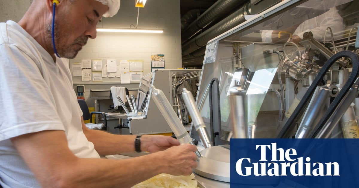 Hopes rise for male contraceptive pill breakthrough