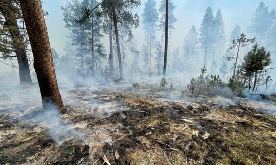 A smoldering fireline image from the Bootleg Fire on Saturday near Klamath Falls, Oregon.