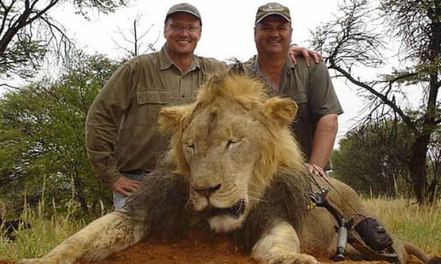 Walter Palmer posing with the body of an unidentified lion