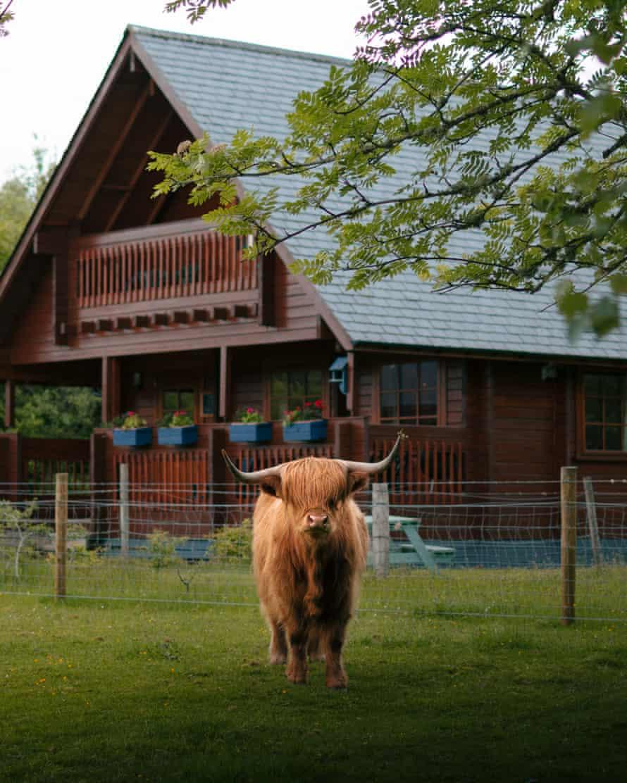Eagle Lodge at Big Sky Lodges, Muir of Ord, Scotland