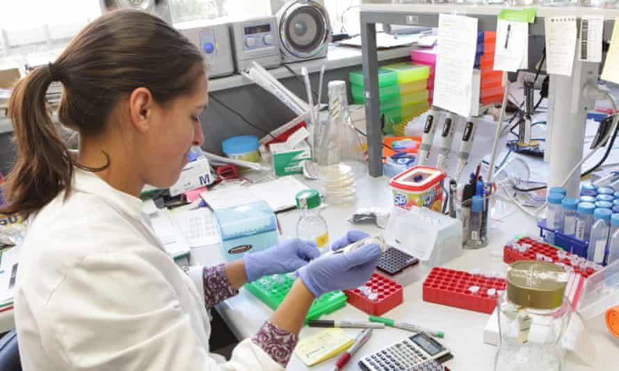 A scientist works in a medical lab at St Vincent's Institute in Melbourne
