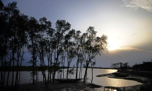 The proposed site of the Rampal coal power plant, which is 65km north of the Sundarbans world heritage area, would expose the downriver forests to pollution and acid rain.