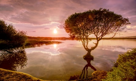 Kenfig Pool nature reserve, Bridgend , with reflected tree  at Sunset
