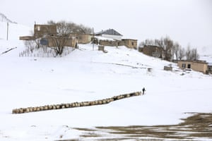 Van, Turkey: a shepherd leads his goats during wintry conditions.