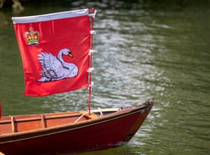 The historic Swan Upping ceremony dates back to the 12th century