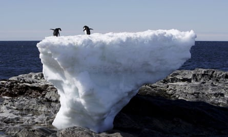 Two Adelie penguins standing atop a block of melting ice on a rocky shoreline at Cape Denison, Commonwealth Bay, in East Antarctica.