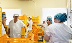 Team work: La Fageda's workers share a joke in the dairy