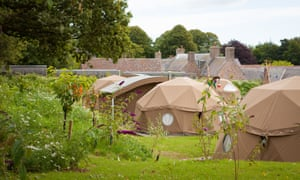 yurts at Jersey Zoo's glampsite