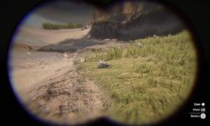 Herring Gull through Red Dead Redemption 2's in-game binoculars