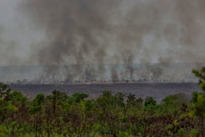 A fire in the Cerrado, October 2018. The area is one of the world's oldest and most diverse tropical ecosystems.