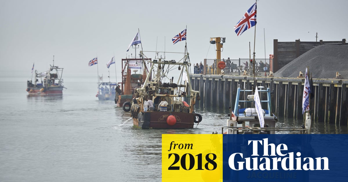 Hard Brexit would mean more and cheaper British fish – but