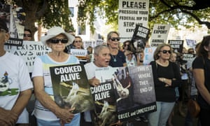 Protesters outside the offices of Emanuel Exports in Perth after the revelation that 2,400 sheep died on a live export ship that was headed for the Middle East