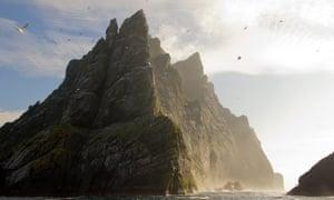 Gannets fly around the northern cliffs of St Kilda.