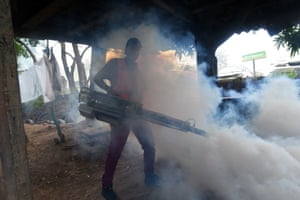 Tegucigalpa, HondurasAn employee of the Honduran Secretariat of Health takes part in a fumigation operation to combat Aedes aegypti, vector of the dengue fever. Honduras is under national alert since July 2 for dengue fever, which left at least 51 dead this year according to authorities