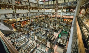Pitt Rivers Museum, Oxford, which has joined with the Museum of the History of Science to reach out to refugees through native-language tours of their extensive collections. The project aims to raise awareness of shared values and aesthetics.