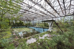 Swimming Pool, Italy by Jonk. While they serve as a mournful commentary on the 20th century – the era of the 'great acceleration' – there is also something hopeful in the vivid evidence of the patient and robust capacities of the non-human world to recover
