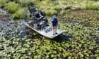 Authorities catch 500lb alligator believed to have eaten Louisiana man