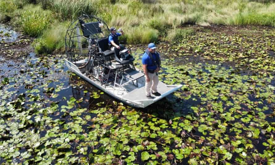 Deputies of the St Tammany Parish sheriff's office on an airboat Tuesday, searching for the alligator believed to have killed a man after Hurricane Ida in Slidell, Louisiana.