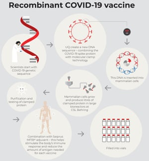 Recombinant Covid-19 vaccine infographic supplied by CSL
