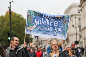 Protesters walk from London's Hyde Park to Whitehall to call for an end to the war on wildlife