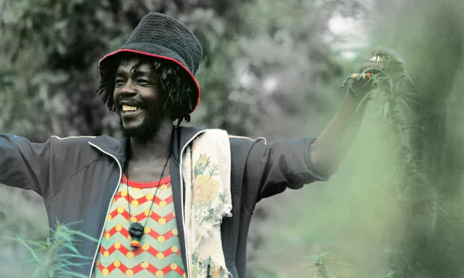 Peter Tosh with some herbs.