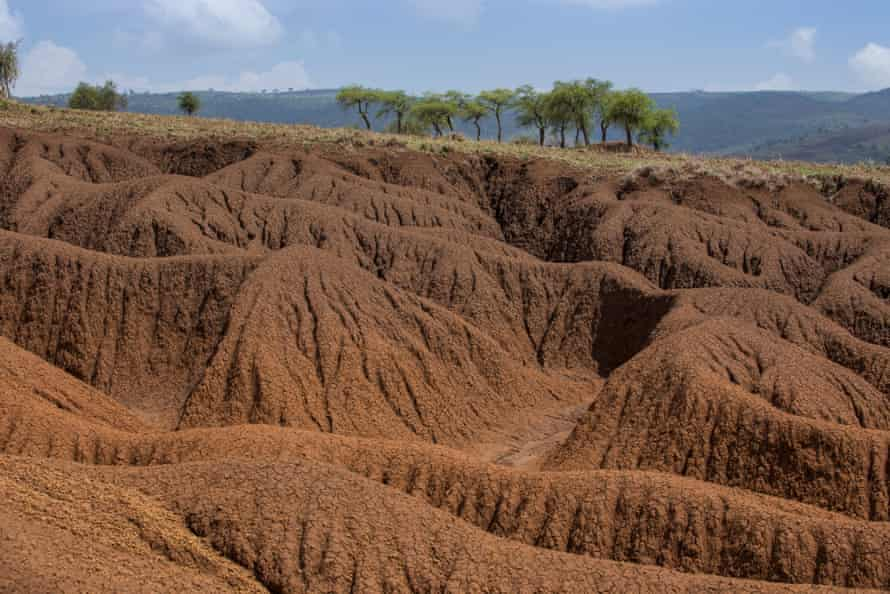 Soil erosion in Maasai heartlands in Tanzania.