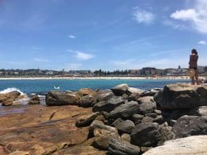 Flat Rock beach in North Bondi, Sydney.