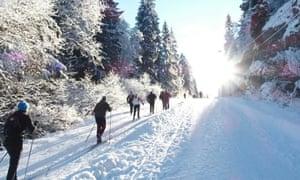 Making tracks: skiing in Oslomarka.