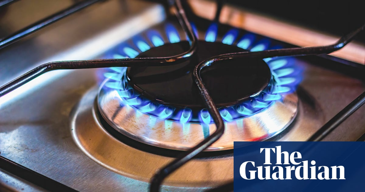 UK bailout of US CO2 firm unfair while energy suppliers go under, says gas boss