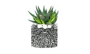 Hubert planter