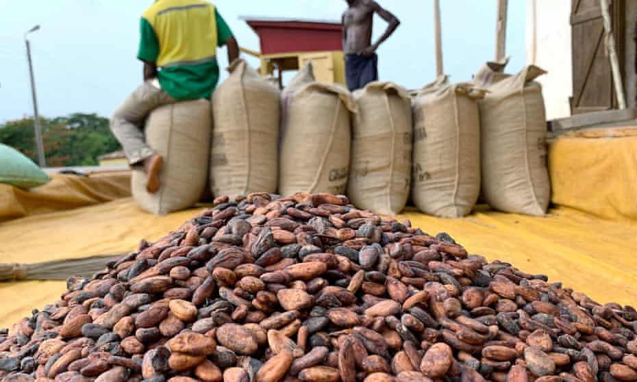 Cocoa beans at a warehouse near Sunyani, Ghana.