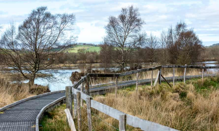 Cors Caron nature reserve in spring.